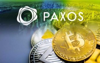 Paxos Has Issued a record $50 Million of The Recently Launched US Dollar-Backed Stablecoin according To Firm's Top Official