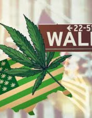 Cannabis Investors Search for New Leadership (TCNNF, NUGS, GTBIF, MJNA, ACB, CGC, TLRY)