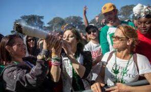The Cannabis Craze is Back in High Gear (SNDL, GRWG, MEDH, CRLBF)