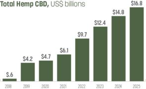 Is it Time to Start Watching CBD Stocks Like CWBHF, MJNA, RLBD, and CRON?