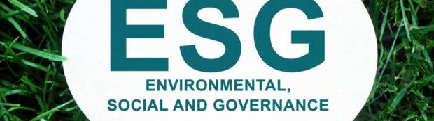 Emerging Opportunities in the ESG Investment Boom (MASN, BLNK, STEM, ENPH, FAN, TAN)