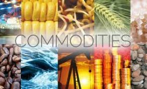 Get Ready for the Coming Oil Crisis (SBOW, VKIN, CPE, RRC, XOM, CVX, SM, CEI, OIH)