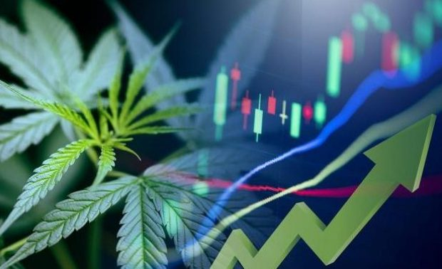 Cannabis Stocks: How Everything Just Changed this Week (GRWG, TLRY, NUGS, SNDL, CURLF, CGC, CRON, MSOS)